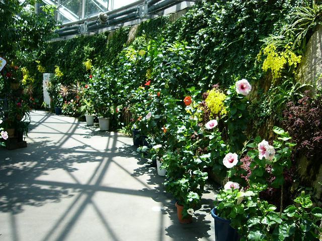 花回廊 温室 その2